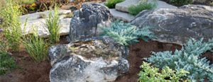 Moss Rock/Weathered Limestone