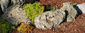 Mini Moss Rock/Weathered Limestone